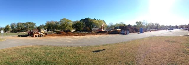 Pan of tree removal in process