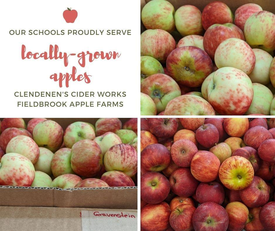 Local Grown Apples from Fieldbrook Apple Farm and Clendenon's Cider Works