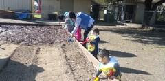 The Kid's Center gardening group
