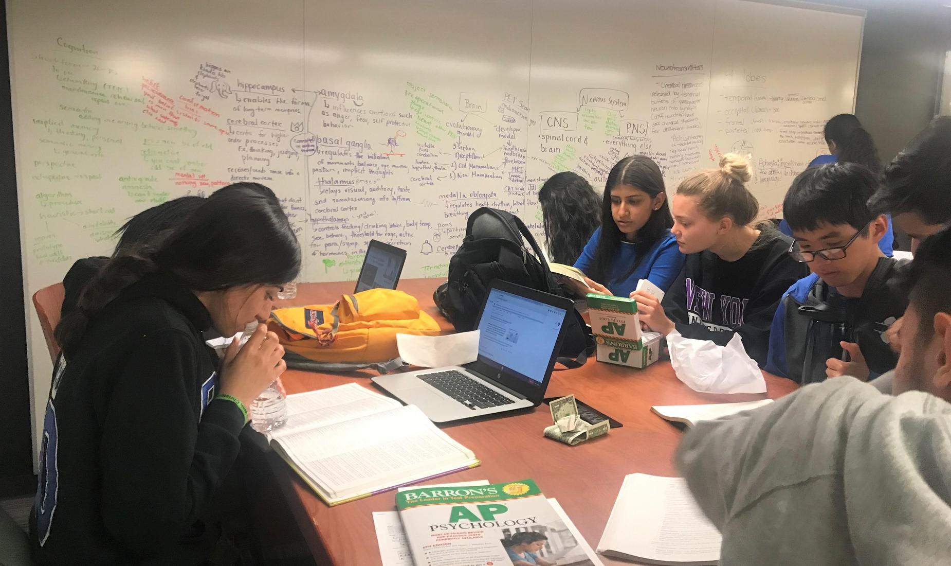 Girls and guys in AP Psychology prepping for their AP Exam. They are sitting at a table, notes all over the whiteboard. The group collaboration and teamwork is top notch.