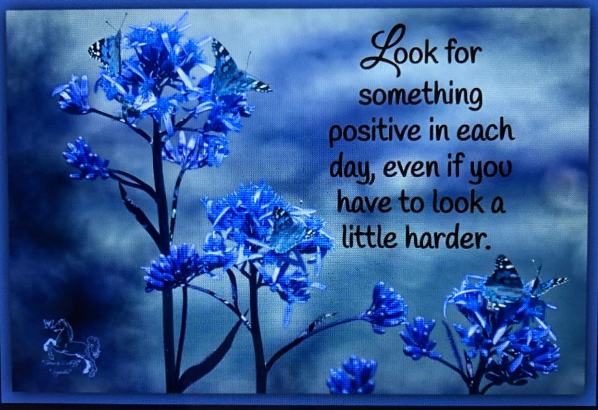 Look for something positive in each day, even if you have to look a little harder.