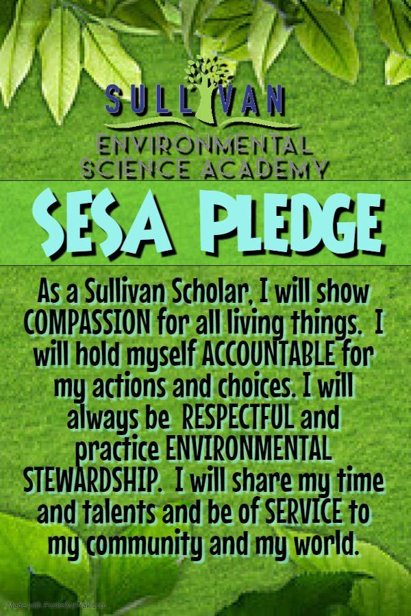 SESA Pledge
