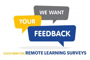 Remote Learning Surveys