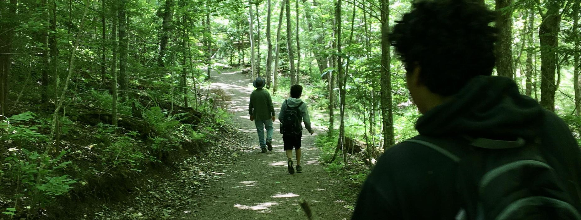Students walking on trail in woods