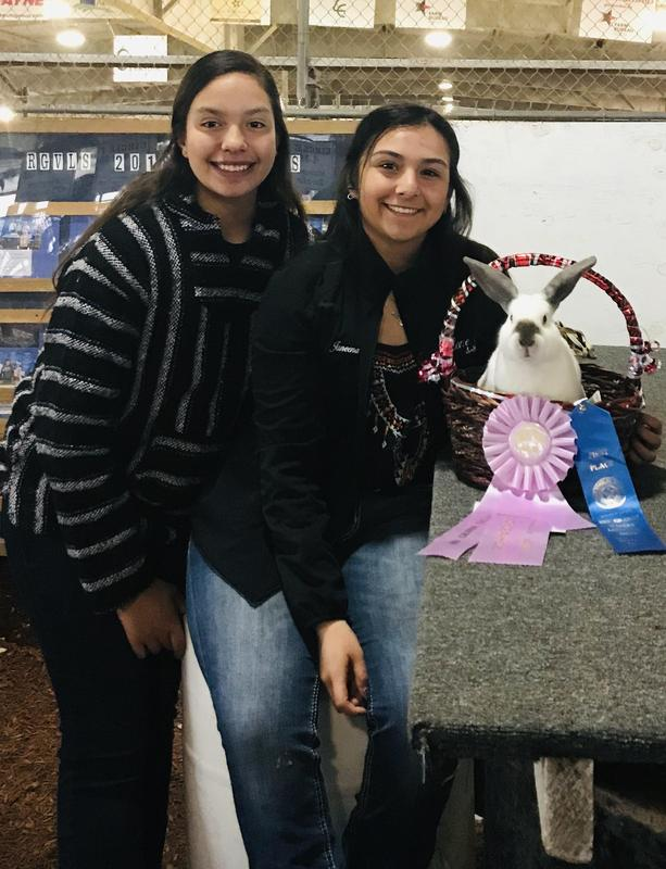Janeena Villarreal Won At The Rio Grande Valley Live Stock Show. Thumbnail Image