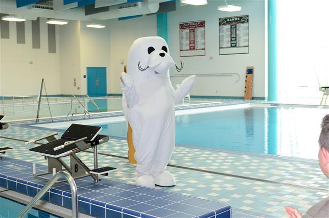 Swim 7