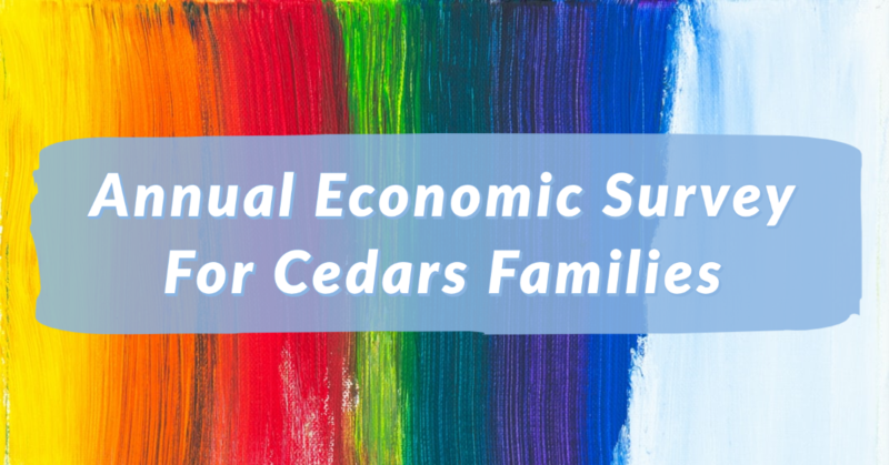 Annual Economic Survey
