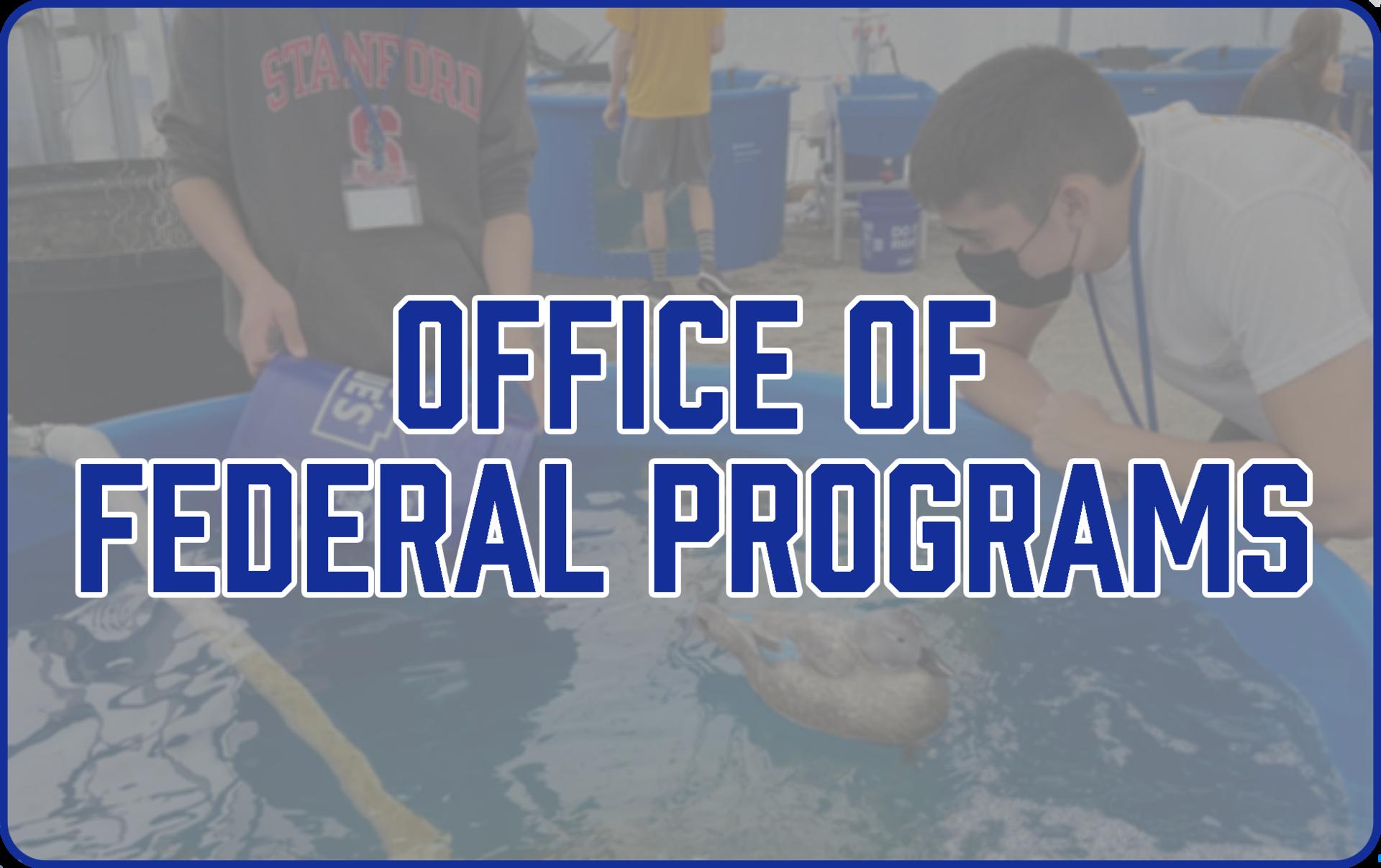 Federal Programs Icon