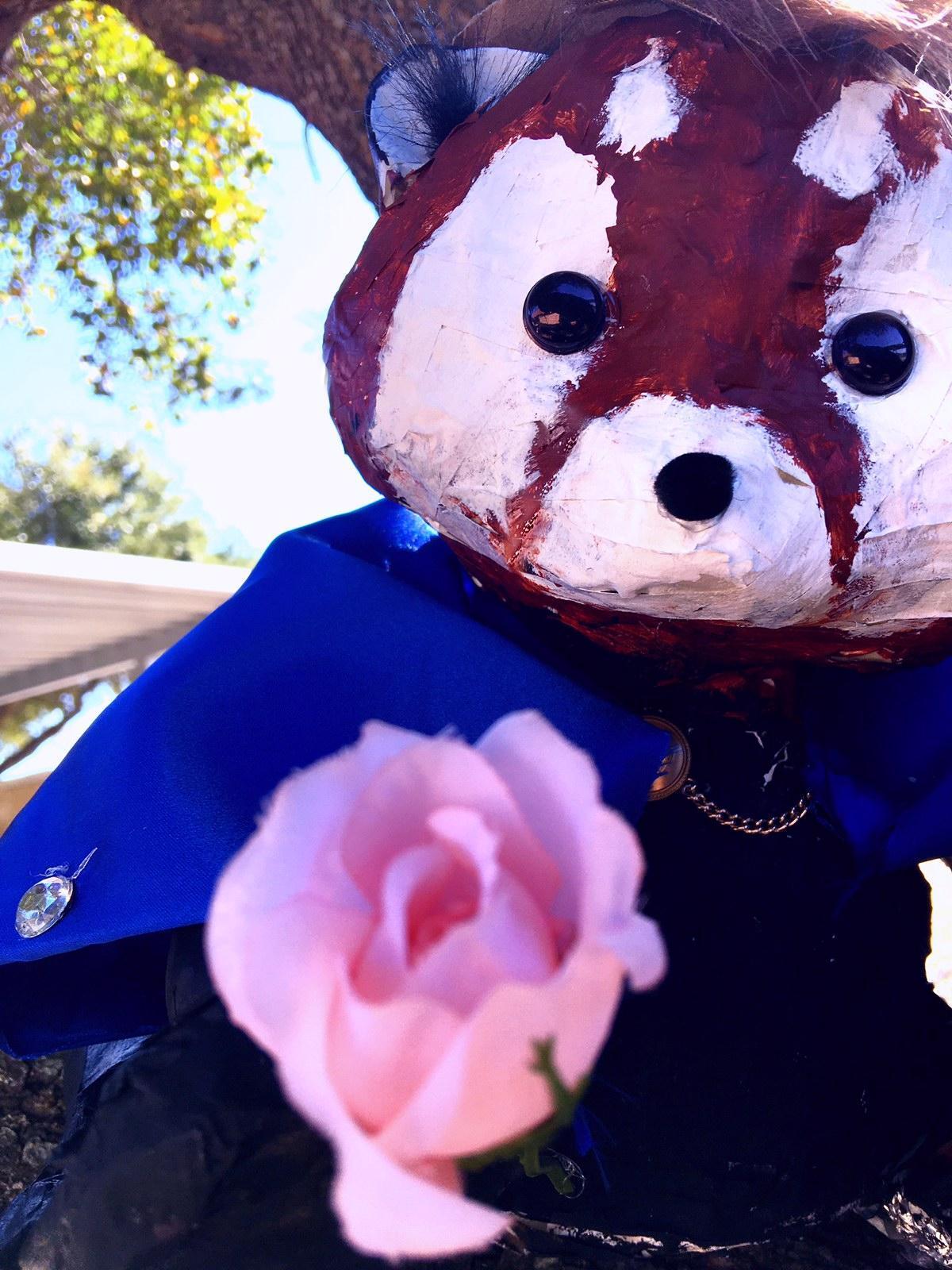 Tyler Stinnett_Art II_Ricardo The Red Panda