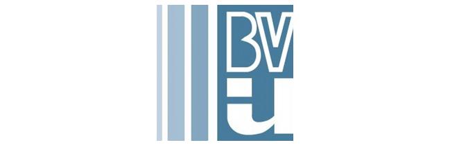 Beaver Valley Intermediate Unit logo