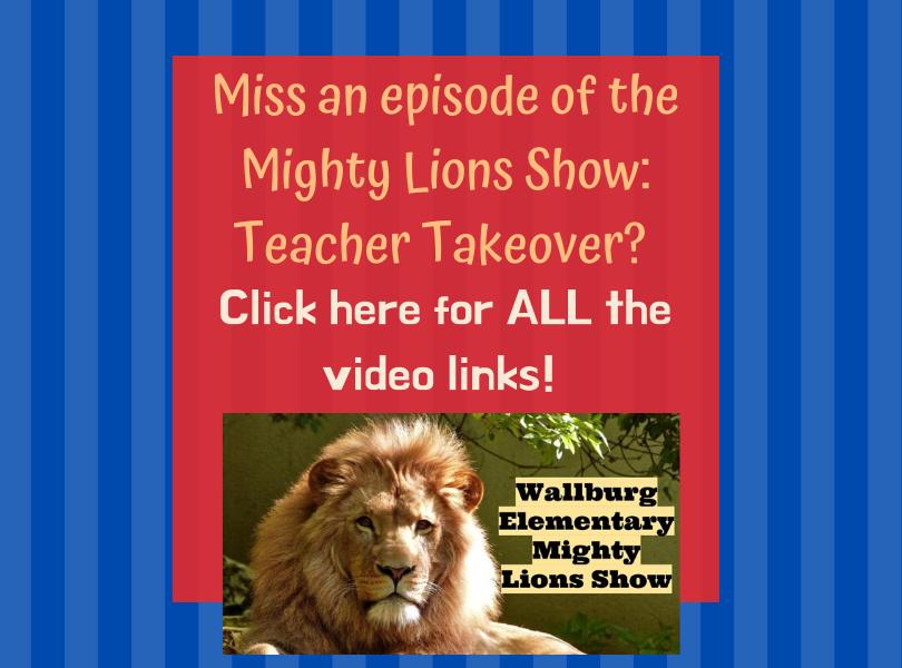 Mighty Lions Show