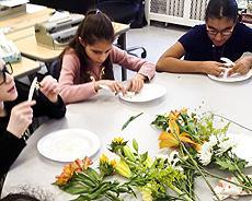 SCH 7 - parts of a flower science experiment
