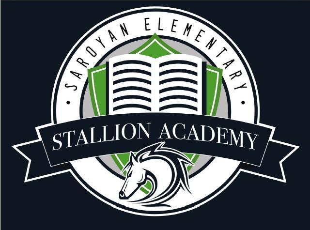 stallion virtual academy header image