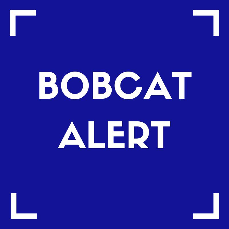 Bobcat Alert Featured Photo