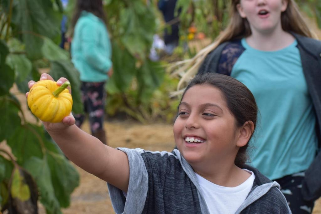 smiling girl with mini pumpkin