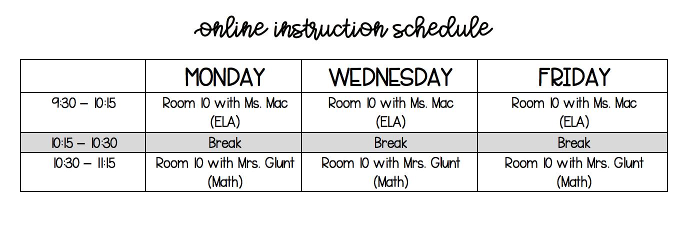 Online Instruction Schedule
