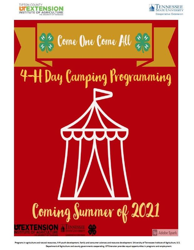 4-H Day Camping Programming Coming Summer of 2021