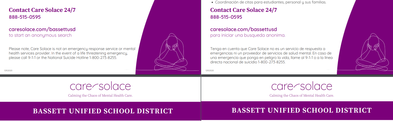 care solace flyer for service