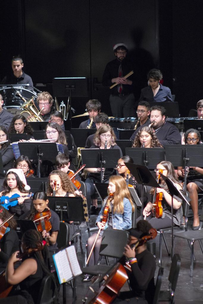 A horizontal view of a portion of the orchestra