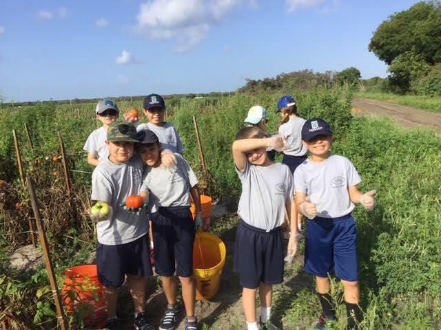 Gleaning Project
