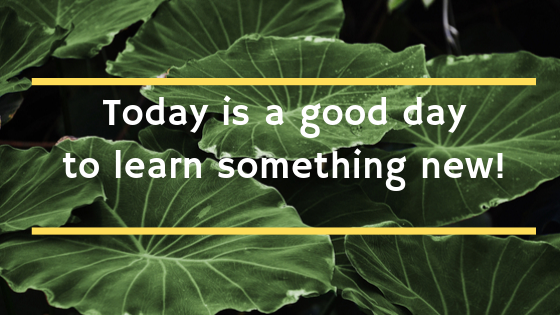 Today is a good day to learn something new.