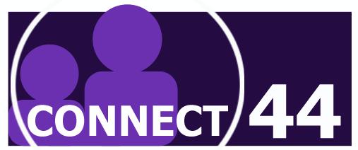 Connect 44 Logo