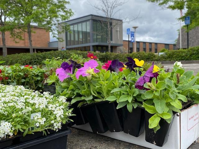 flowers in front of school