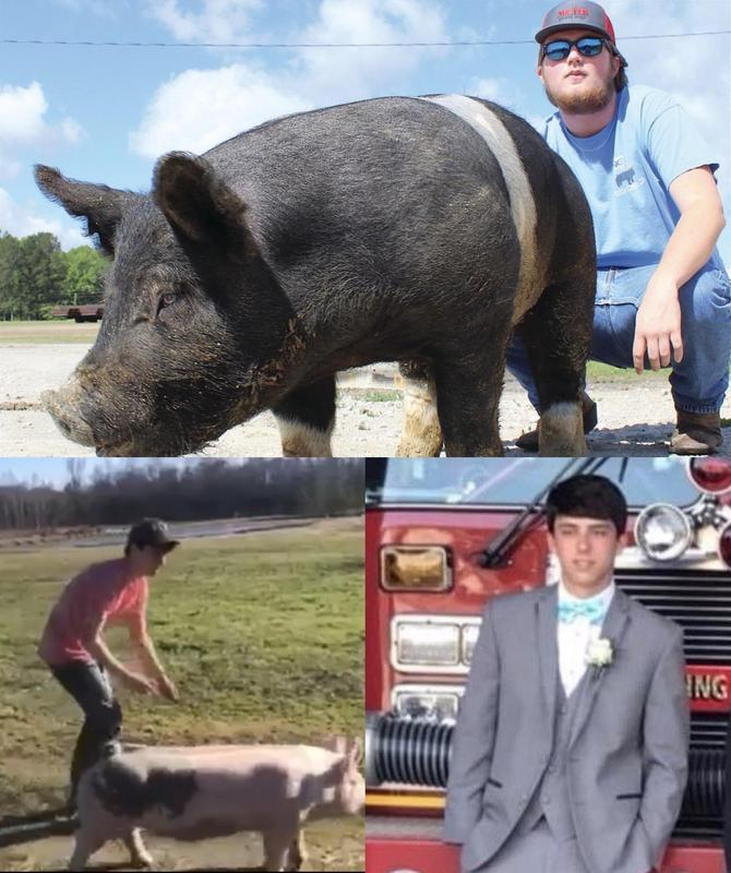 T, and Cody posing with their pigs.