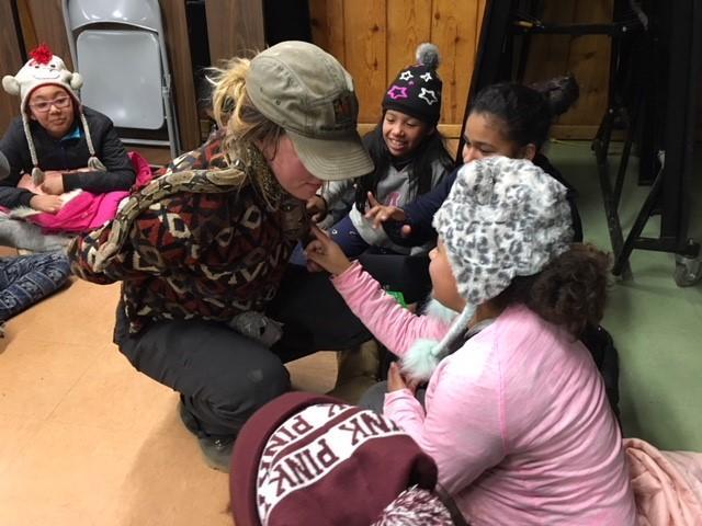 Campers meeting snakes
