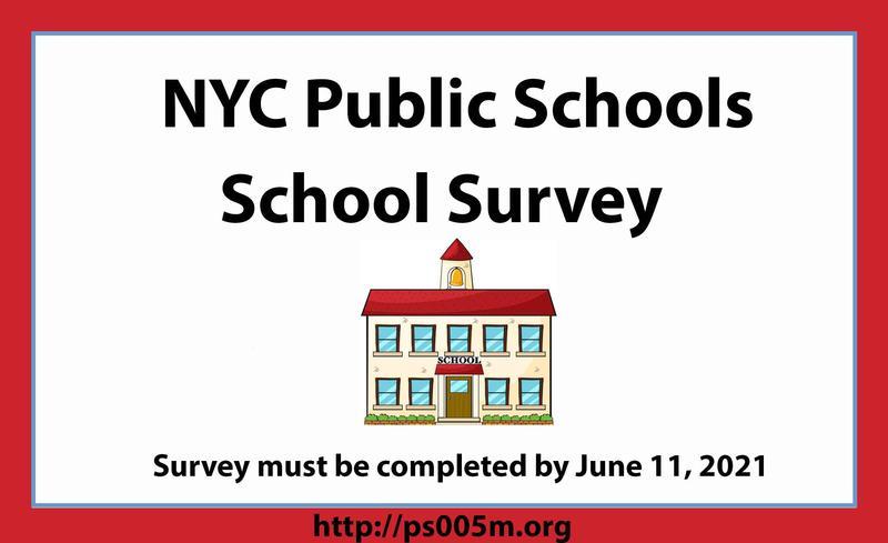 NYC School Survey Featured Photo
