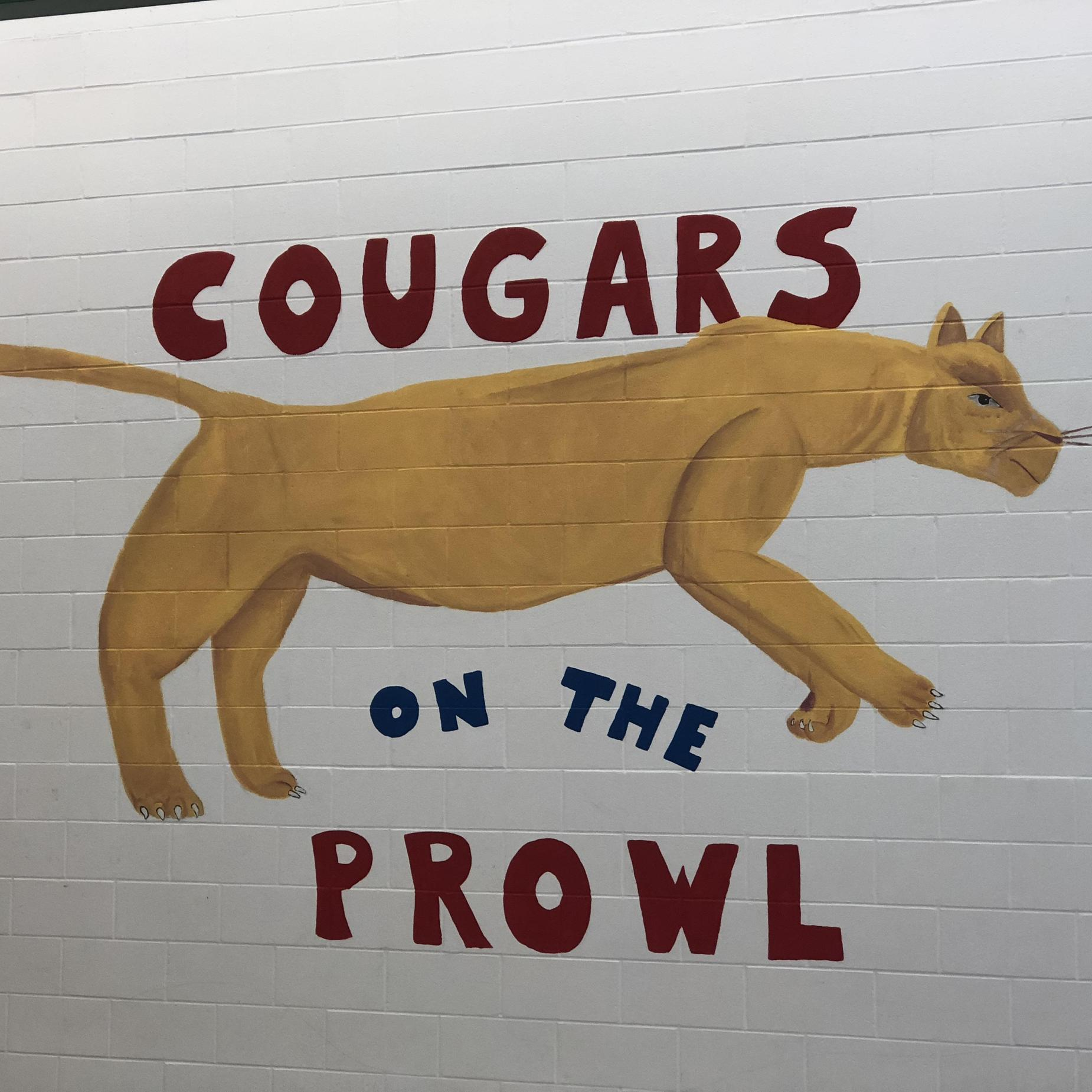 Speight cougar on the wall