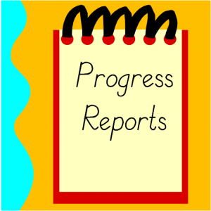Progress report explanation: NM and I Featured Photo