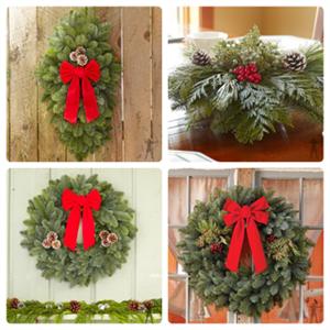Christmas Evergreen Fundraiser Thumbnail Image