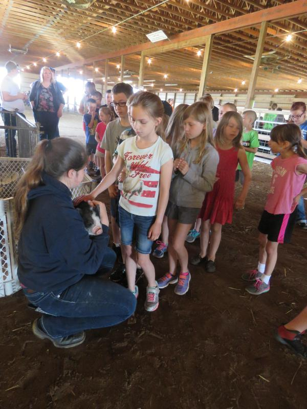 Ag Awareness gave students a chance to get up close to different animals.