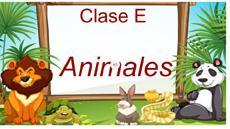 Class E with Animales
