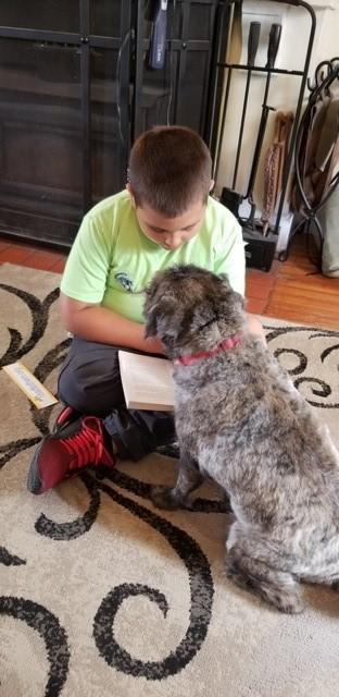Reading Poppy to a dog