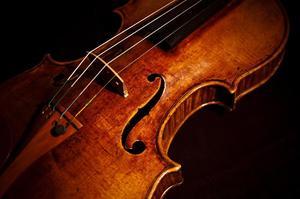 goffriller-violin-color-sam-hymas.jpg