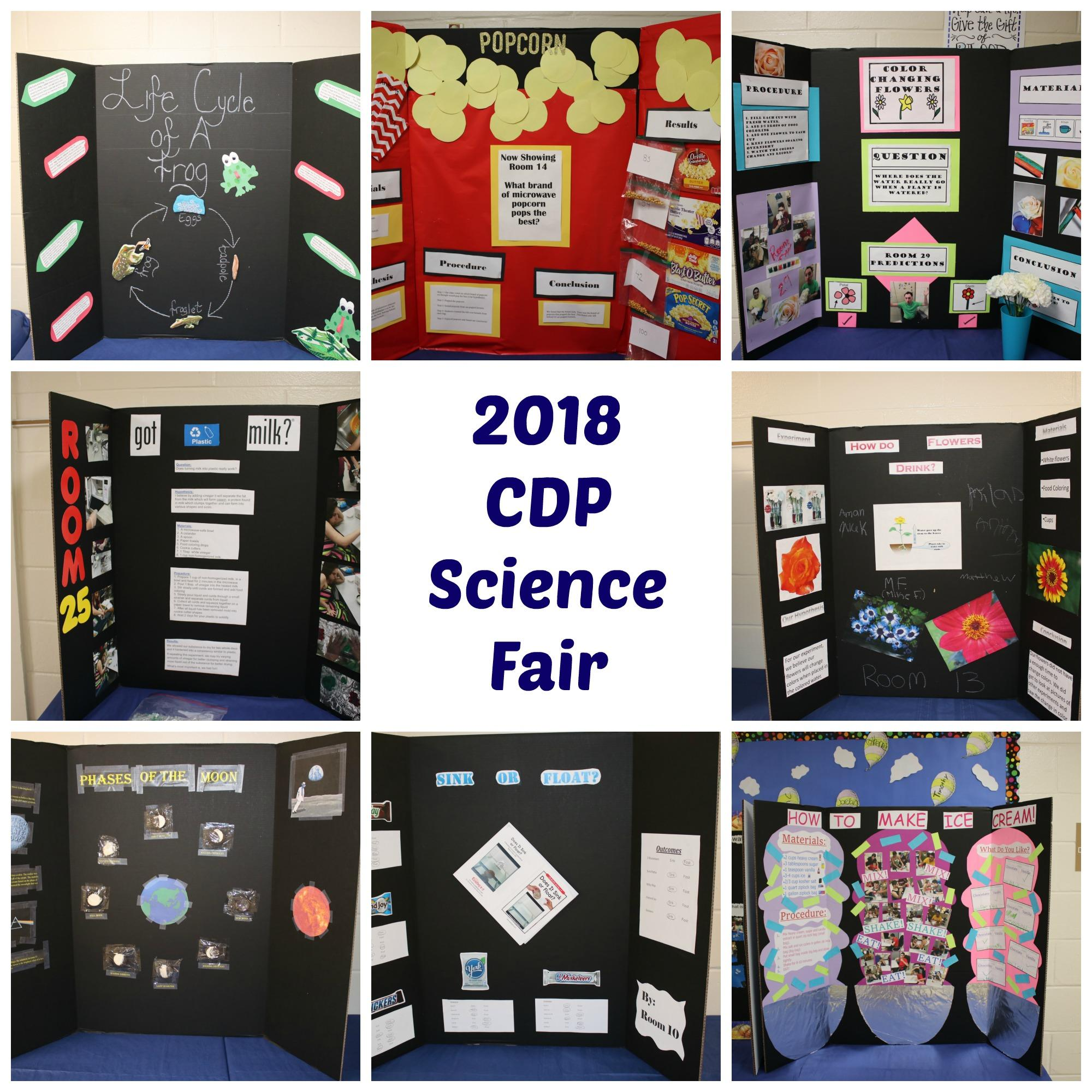 Collage of science fair poster boards
