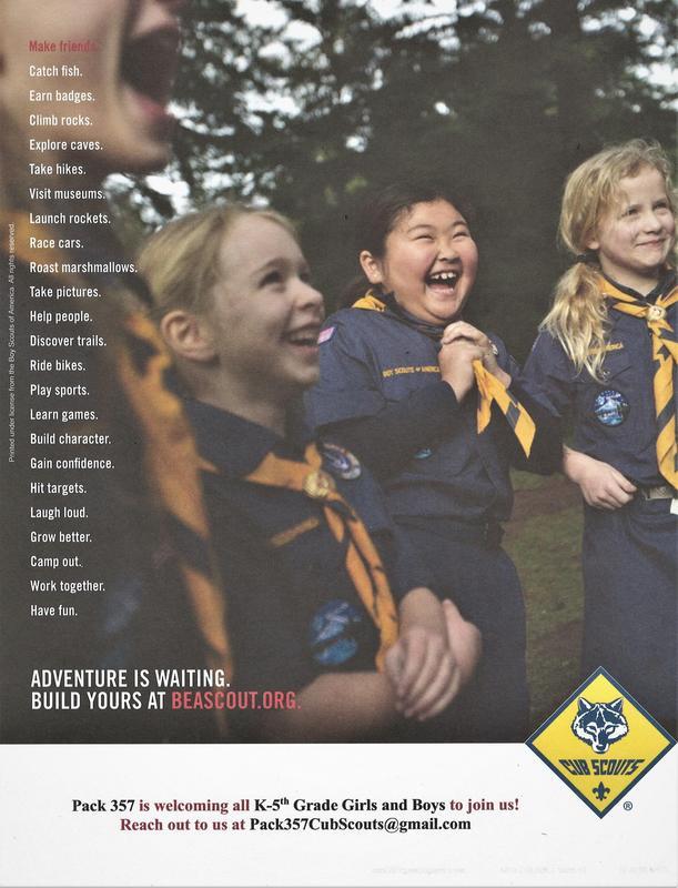 cub scouts flyer