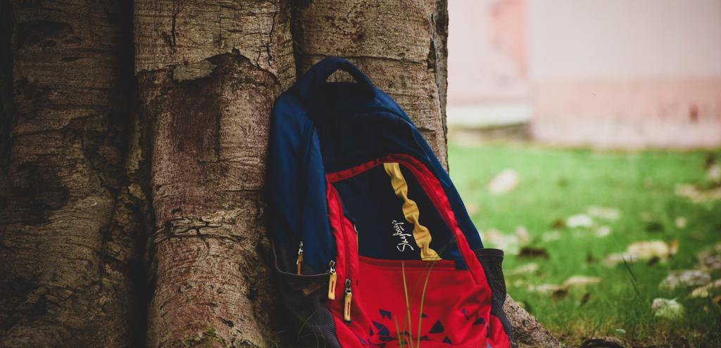 Backpack leaning on tree