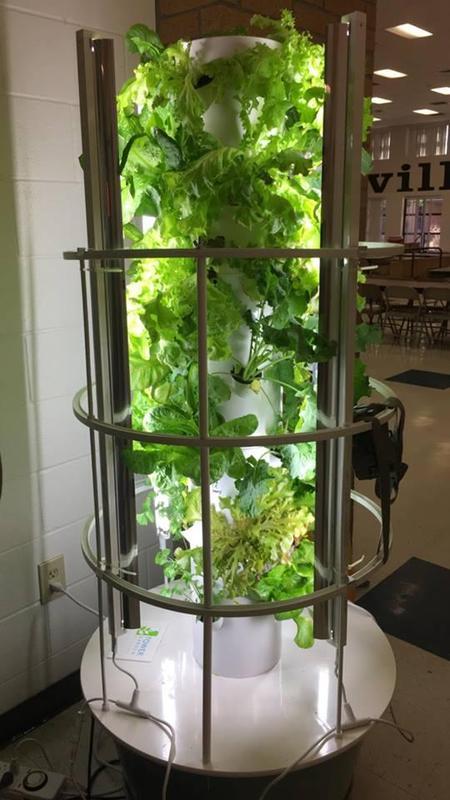 aeroponics garden