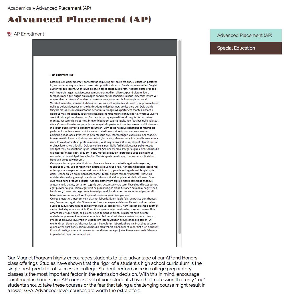screenshot of embedded pdf set to medium