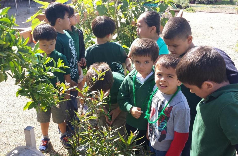 students at garden center