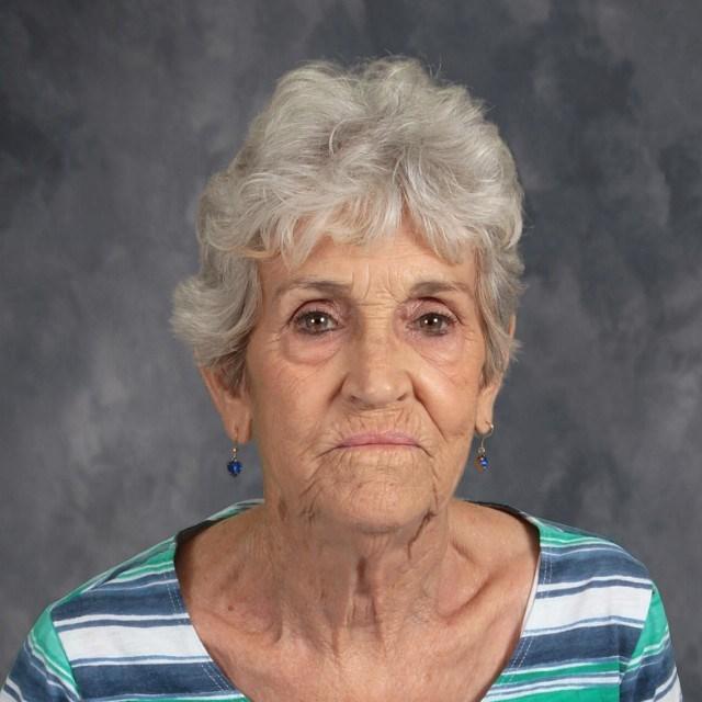 Judy Willis's Profile Photo