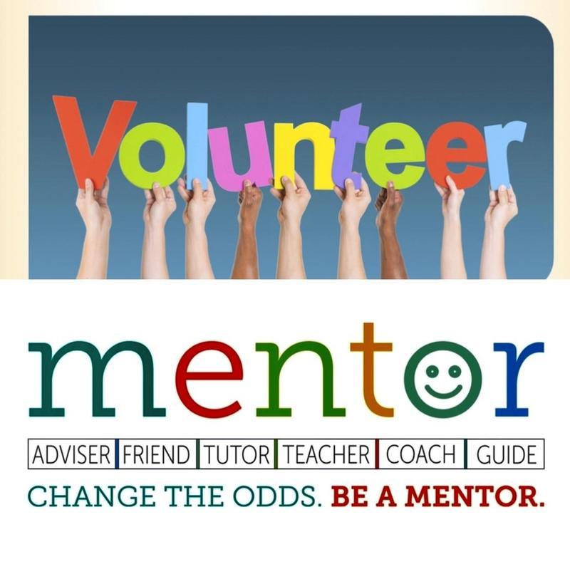 Volunteer & Mentor