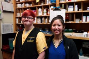 students job shadow at key animal clinic