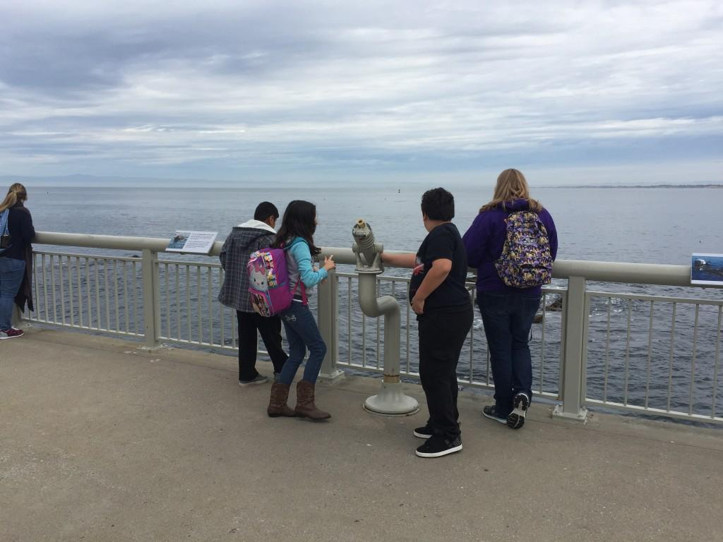 students looking at the ocean