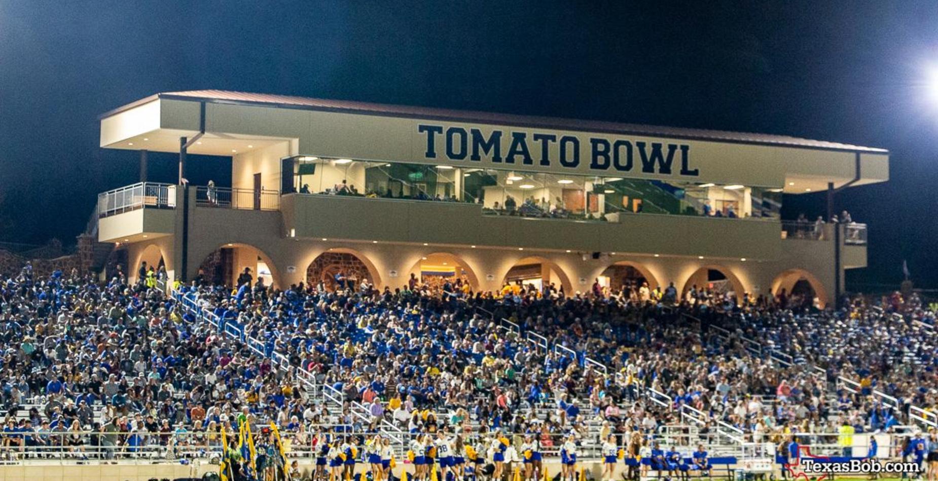 crowd at stadium