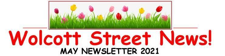 WSS Newsletter Header Graphic