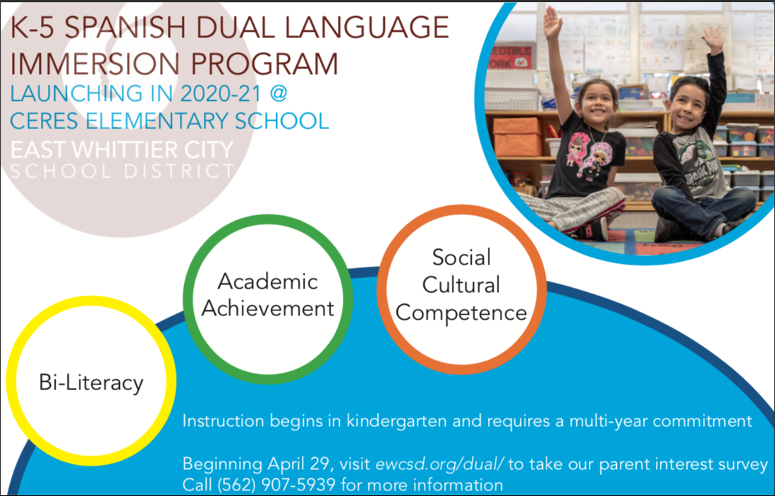 English version of dual language immersion informational postcard